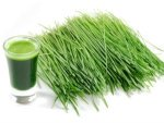 Health Benefits Of Wheat Grass And Nutrition