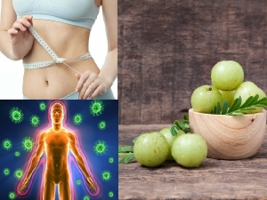 Benefits Of Eating Amla In Empty Stomach During Winter