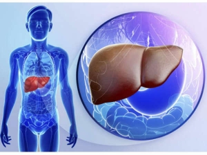 Foods That Take Good Care Of Your Liver