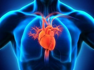 What Are The Symptoms Of Holes In The Heart