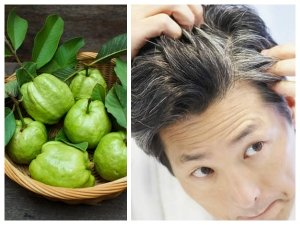 How To Use Guava Leaves To Get Rid Of Grey Hair