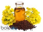Beauty Benefits Of Mustard Oil For Skin And Hair In Telugu