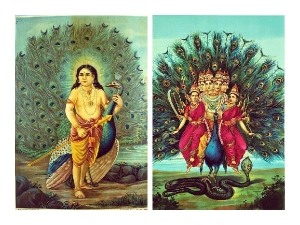 Soorasamharam 2020 Date Time Significance And Celebrations Of Lord Murugan Festival In South India