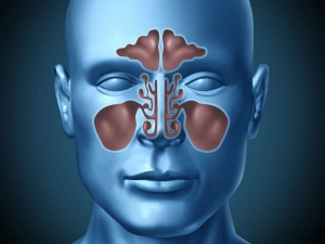 Tips To Avoid Chronic Sinusitis And Congestion During Seasonal Change