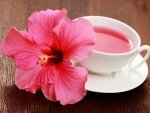How To Make Hibiscus Oil At Home For Hair Fall