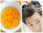 Surprising Benefits Of Egg Oil For Hair And Skin In Telugu