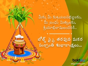 Makar Sankranti 2021 Wishes Greetings Quotes Messages Facebook And Whatsapp Status Messages In T