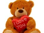 Teddy Day 2021 Date Ideas Importance Why To Celebrate
