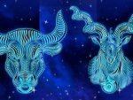 Who Is Your Ideal Partner Based On Your Zodiac Sign