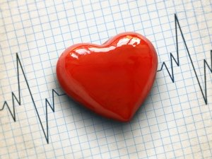 Resuming Love Making After Heart Attack May Help Recovery