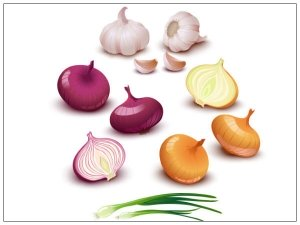 Is It Safe To Eat Sprouted Onion And Garlic