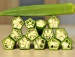 Is Okra Ladyfinger Good For People With Diabetes
