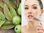 Guava Leaves Face Pack For Common Skin Problems In Telugu