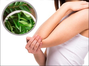 Homemade Curry Leaves Mask To Get Rid Of Dark Elbows And Knees