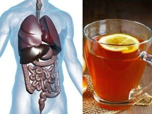 Drink This Detox Tea To Help You Burn Belly Fat Shed Weight
