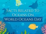 World Oceans Day 2021 Some Lesser Known Facts About The Oceans