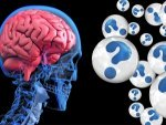 Mysterious Brain Disease Hit Canada 48 Cases Reported So Far