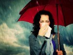 Most Common Diseases In Monsoon And Prevention Tips In Telugu