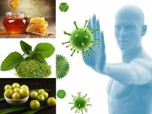 Foods You Must Eat On An Empty Stomach To Boost Immunity
