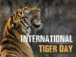 International Tiger Day Theme 2021 History Quotes Slogans In Telugu