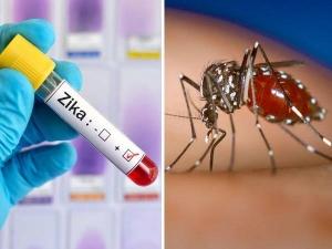 Zika Virus Case Detected In Kerala Check Symptoms Prevention In Telugu