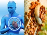 Health Benefits Of Pine Nuts Chilgoza Pine Nuts In Telugu