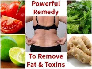 Remedies To Remove Fat Toxins From The Body