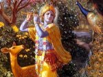Krishna Janmashtami 2021 Ashtottara Shatanamavali Of Lord Krishna 108 Names With Mantra To Chant