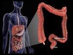 Health Benefits Of Eating Fenugreek Everyday In Telugu