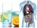 What Happens If You Drink Lemon Water For Seven Days In Telugu