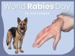 World Rabies Day 2021 Date History Theme And Significance In Telugu