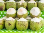 World Coconut Day The Best Time To Drink Coconut Water And Health Benefits Side Effects In Telugu