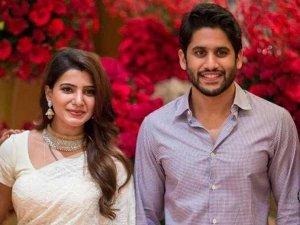 Naga Chaitanya Samanatha Divorce Common Reasons Why Marriages End In Telugu