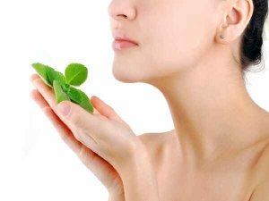 Beauty Benefits Of Mint In Skincare In Telugu